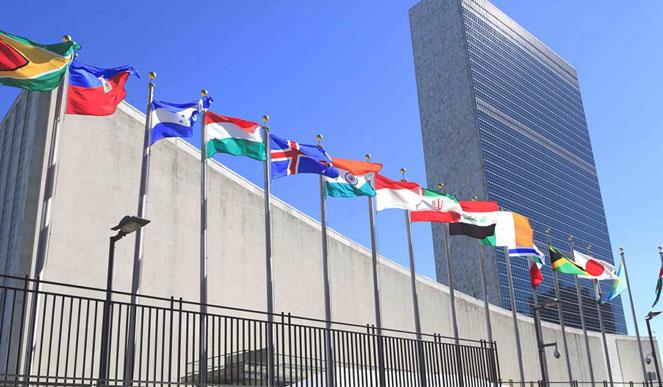 The IIW at the UN